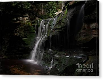 Elakala Falls Are A Series Of Four Waterfalls Canvas Print by Dan Friend