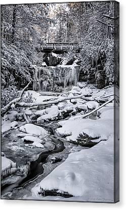 Elakala Falls Canvas Print