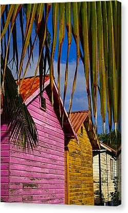 Electric Avenue Canvas Print by Skip Hunt