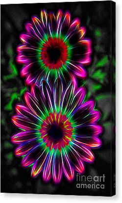 Electric Duo Canvas Print by Kasia Bitner
