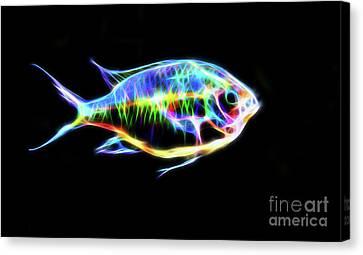 Electric Light Tropical Fish Canvas Print
