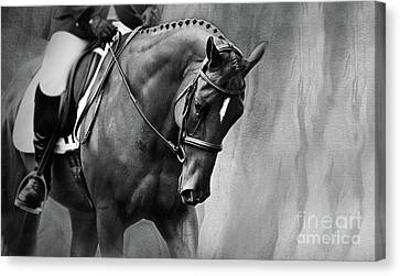 Elegance - Dressage Horse Large Canvas Print by Michelle Wrighton