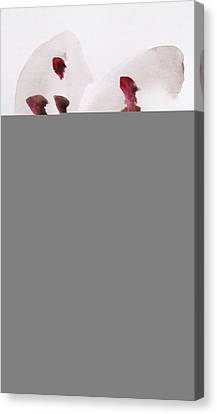 Elegance Canvas Print by Trilby Cole