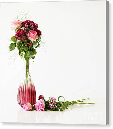 Canvas Print featuring the photograph Elegance by Wendy Wilton