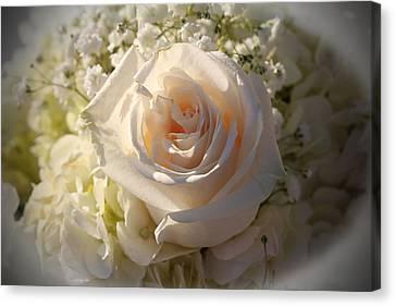 Elegant White Roses Canvas Print by Cynthia Guinn