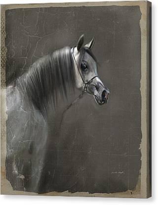 Elegance  Canvas Print by Dorota Kudyba