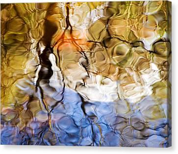 Elementals Canvas Print by Joanne Baldaia - Printscapes