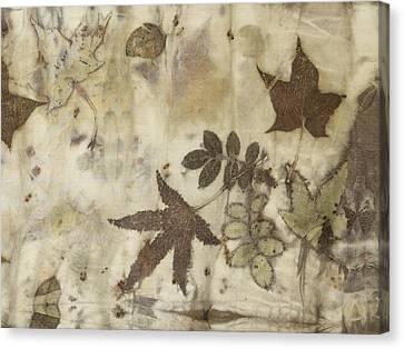 elements of autumn II Canvas Print by Carolyn Doe