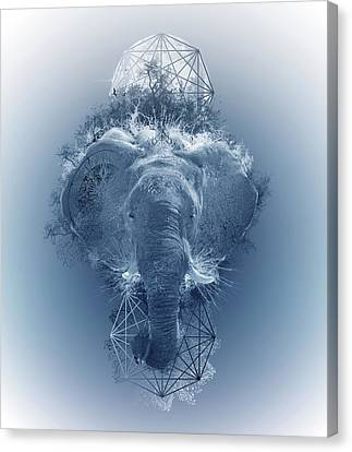 Abstract Nature Canvas Print - Elephant 2 by Bekim Art