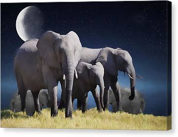 Elephant Bath Time Painting Canvas Print by Ericamaxine Price