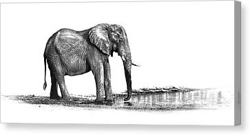 Elephant Bull Tusker At Water Hole Canvas Print
