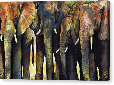 Elephant Herd Canvas Print by Paul Dene Marlor