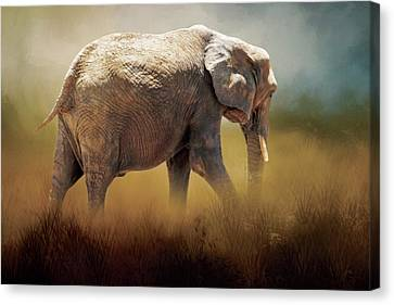 Canvas Print featuring the photograph Elephant In The Mist by David and Carol Kelly