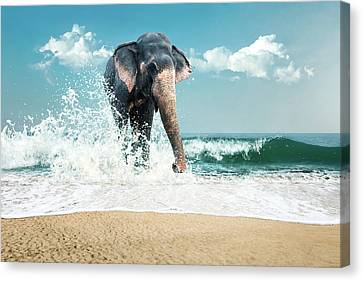 Elephant In Water Canvas Print