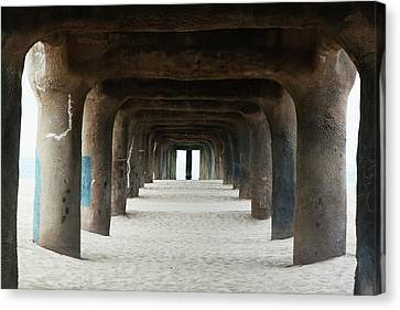 Elephant Legs Canvas Print