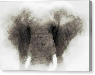 Elephant Portrait Canvas Print by John Stuart Webbstock