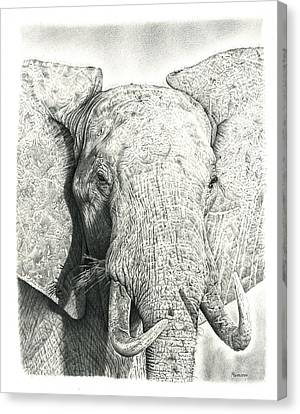 African Drawings Canvas Print - Elephant by Remrov