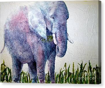 Elephant Sanctuary Canvas Print