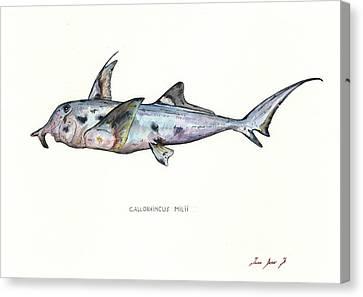 Elephant Shark Canvas Print