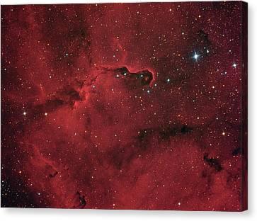 Elephant Trunk Nebula In Constellation Cepheus Canvas Print