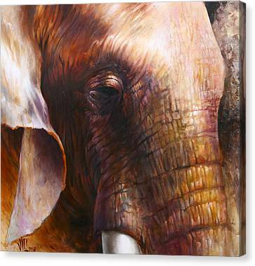 Elephant Empathy Canvas Print