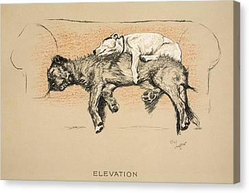 Elevation Canvas Print by Cecil Charles Windsor Aldin