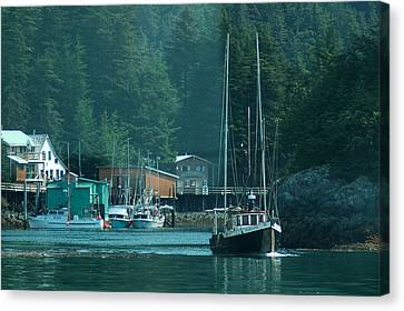 Elfin Cove Alaska Canvas Print by Harry Spitz