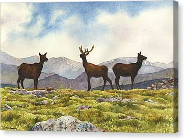 Canvas Print featuring the painting Elk In The Evening by Anne Gifford
