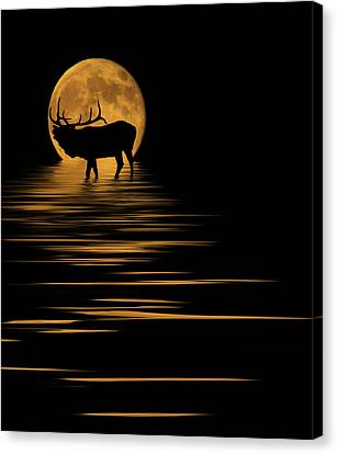 Elk In The Moonlight Canvas Print by Shane Bechler