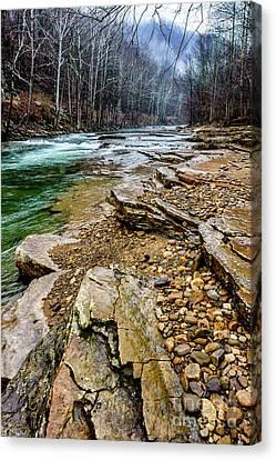 Elk River In The Rain Canvas Print by Thomas R Fletcher
