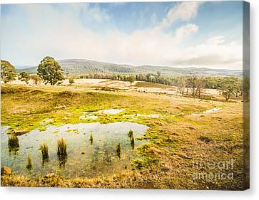Ellendale Tasmania Background Canvas Print by Jorgo Photography - Wall Art Gallery