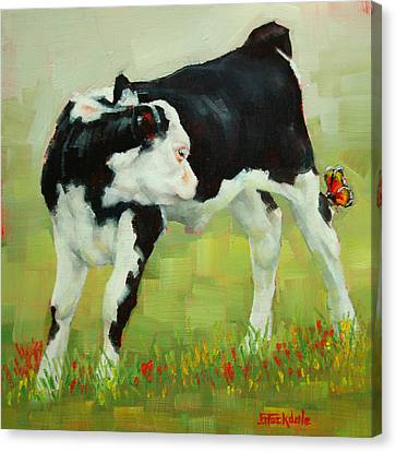 Elly The Calf And Friend Canvas Print by Margaret Stockdale