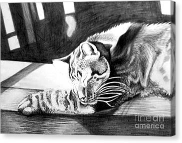 Elmer The Cat Canvas Print by Genevieve Esson