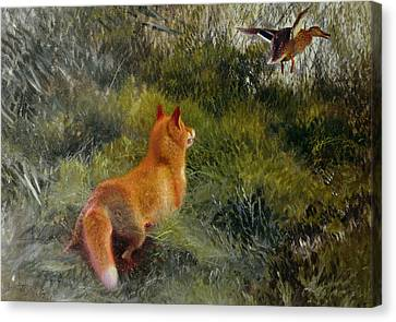 Eluding The Fox Canvas Print by Bruno Andreas Liljefors