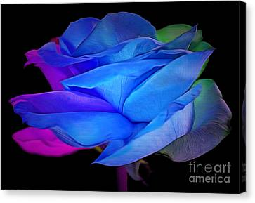 Abstract Rose Abstract Canvas Print - Elusive Romance by Krissy Katsimbras