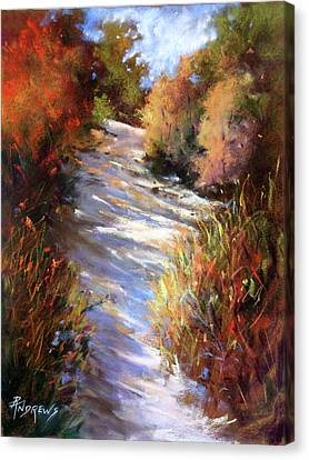 Embankment And Shadows Canvas Print by Rae Andrews