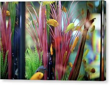Canvas Print featuring the digital art Embossed Fishies by Ellen Barron O'Reilly