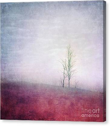 Embracing Solitude Canvas Print by Priska Wettstein