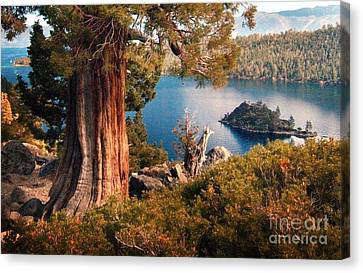 Emerald Bay Overlook Canvas Print by Norman  Andrus