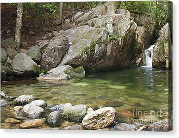 Emerald Pool - White Mountains New Hampshire Usa Canvas Print by Erin Paul Donovan