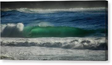 Emerald Sea Canvas Print by Donna Blackhall