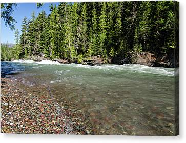 Emerald Waters Flow Canvas Print