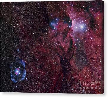 Emission Nebula Ngc 6188 Star Formation Canvas Print by Robert Gendler