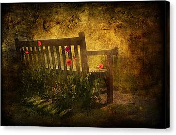 Empty Bench And Poppies Canvas Print by Svetlana Sewell