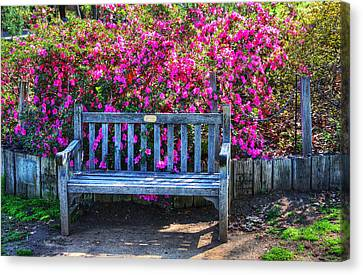 Canvas Print featuring the photograph Empty Bench by Richard Stephen
