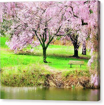 Canvas Print featuring the photograph Empty Bench Surrounded By Spring Colors by Gary Slawsky