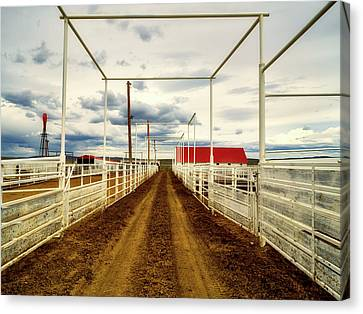Empty Corrals Canvas Print by L O C
