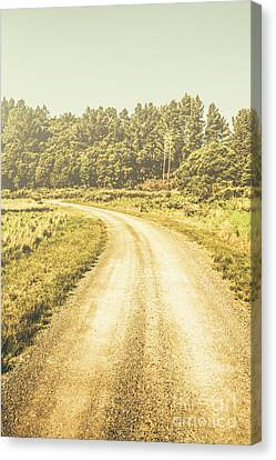 Empty Curved Gravel Road In Tasmania, Australia Canvas Print by Jorgo Photography - Wall Art Gallery