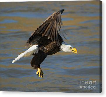 Empty Handed Canvas Print by Mike Dawson