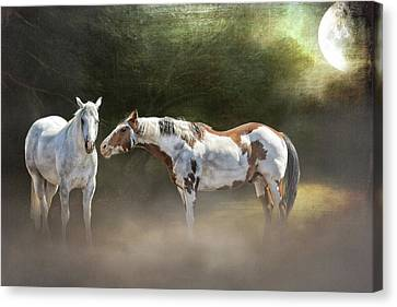 Enchanted Evening Canvas Print by Debby Herold